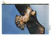 Juvenile Bald Eagle Two Carry-all Pouch