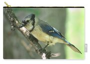 Juvenile Blue Jay Carry-all Pouch