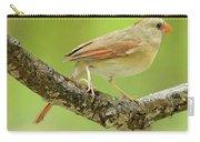 Juvenile, Female Cardinal, Animal Portrait Carry-all Pouch