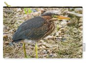 Juvenile Green Heron Carry-all Pouch