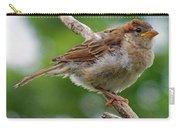 Juvenile House Sparrow Carry-all Pouch