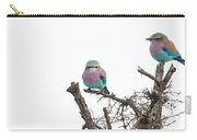 Juvenile Lilac Breasted Roller Carry-all Pouch