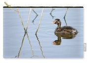 Juvenile Little Grebe Tachybaptus Ruficollis Carry-all Pouch