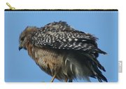 Juvenile Red-shouldered Hawk Carry-all Pouch