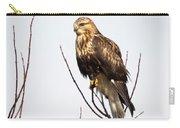 Juvenile Rough-legged Hawk  Carry-all Pouch