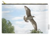 Juvenile Seagull In Flight Carry-all Pouch