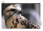 Juvenile Swainson's Hawk Carry-all Pouch