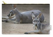 Kangaroo Relaxing On Ground In The Sun Carry-all Pouch
