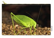 Katydid Close Up Bug Carry-all Pouch
