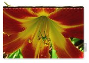 Katydid Surprise Carry-all Pouch