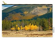 Kenosha Pass Aspens 4 Carry-all Pouch