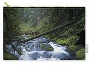 Kentucky Creek Carry-all Pouch