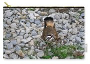 Kildeer And Eggs Carry-all Pouch