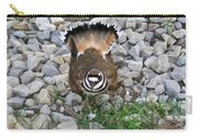 Kildeer And Nest Carry-all Pouch