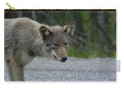 Killarney Coyote Carry-all Pouch