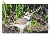 Killdeer Chick Carry-all Pouch