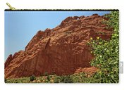 Kissing Camels At The Garden Of The Gods Carry-all Pouch