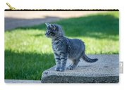Kitten 1 Carry-all Pouch