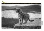 Kitten 2 Carry-all Pouch