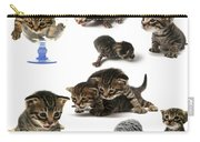 Kitten Collage Carry-all Pouch
