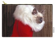 Kitten In Stocking Carry-all Pouch by Garry Gay