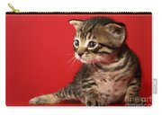 Kitten On Red Carry-all Pouch