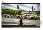 Kitty Across The Street  Carry-all Pouch
