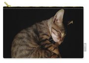 Kitty Cat Curls Up Carry-all Pouch