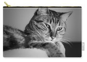 Kitty Lounge Carry-all Pouch