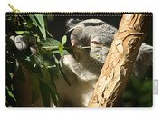 Koala Bear 3 Carry-all Pouch