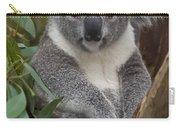 Koala Phascolarctos Cinereus Carry-all Pouch by Zssd