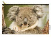 Koala Snack Carry-all Pouch