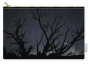 Kodachrome Basin Night Sky 2963 Carry-all Pouch
