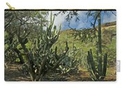 Koko Crater Carry-all Pouch