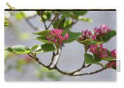 Korean Spice Viburnum Carry-all Pouch