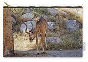 Kudu Near A Waterhole In Living Desert Zoo And Gardens In Palm Desert-california  Carry-all Pouch