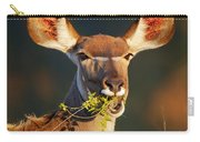 Kudu Portrait Eating Green Leaves Carry-all Pouch