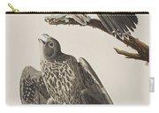 Labrador Falcon Carry-all Pouch