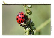 Lady Beetle Carry-all Pouch
