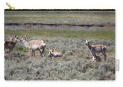 Lady Pronghorn Gathering Carry-all Pouch