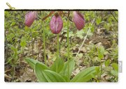 Lady Slipper 2059 Carry-all Pouch