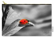 Ladybird Carry-all Pouch