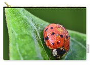Ladybug With Dew Drops Carry-all Pouch