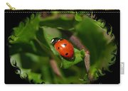 Ladybug With Swirly Framing Carry-all Pouch