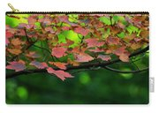Laid Upon The Branches Carry-all Pouch