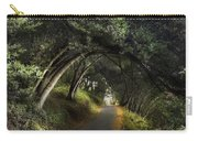 Lake Chabot Carry-all Pouch