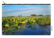 Pointe Mouilee Lake Erie Carry-all Pouch