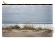 Lake Erie Sand Dunes Dry Grass And Ice Carry-all Pouch