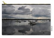 Lake Harriet Carry-all Pouch