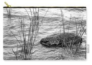 Lake Huron Shoreline 10 Bw Carry-all Pouch